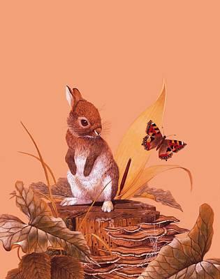 Spiderweb Painting - Baby Rabbit by English School