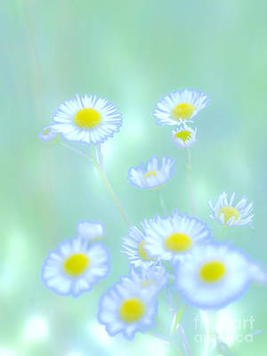 Background Flowers Print by Tara Lynn