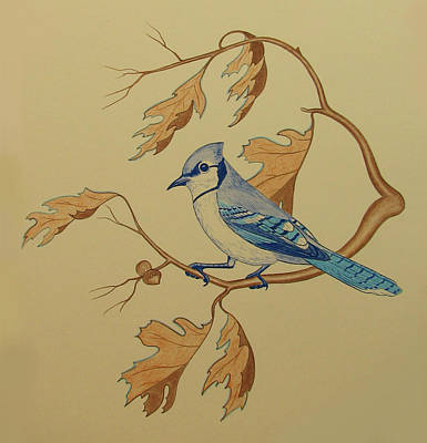 Bluejay Drawing - Backyard Jay by Lonnie Tapia