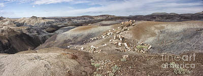 Petrified Forest Arizona Photograph - Badlands In Petrified Forest by Melany Sarafis