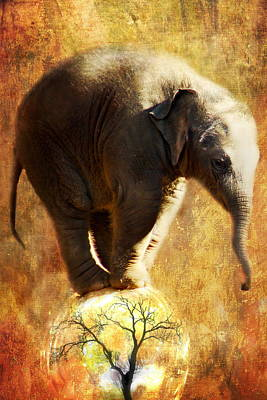 Elephants Digital Art - Balance by Trudi Simmonds