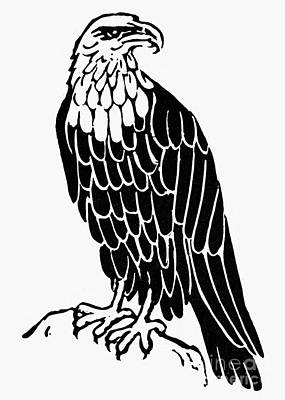 Bald Eagle Print by Granger