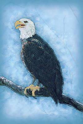 Bald Eagle Print by Jack Zulli