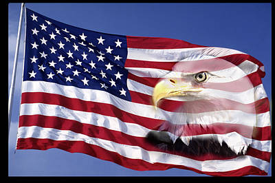 American Eagle Photograph - Bald Eagle On Flag by Panoramic Images
