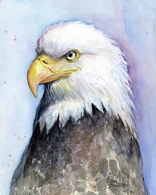 Bald Eagle Portrait Print by Olga Shvartsur