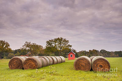 Cattle Drive Photograph - Bales Of Hay In The Texas Countryside - Reagan Texas by Silvio Ligutti