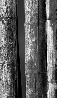 Hollow Photograph - Bamboo Abstract by Wim Lanclus
