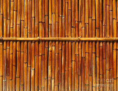 Bamboo Fence Photograph - Bamboo Fence by Yali Shi