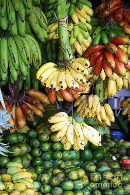 Stall Photograph - Banana Display. by Jane Rix
