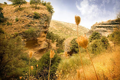 Spanish Landscape Photograph - Bandit Country Near The Edge Of The Fan In Ronda Area Andalucia Spain  by Mal Bray