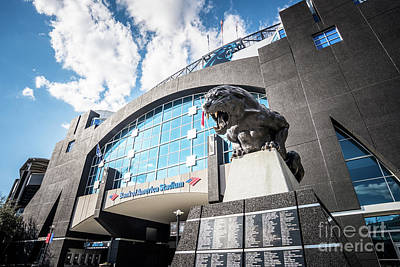 Charlotte Nc Photograph - Bank Of America Stadium Carolina Panthers Photo by Paul Velgos
