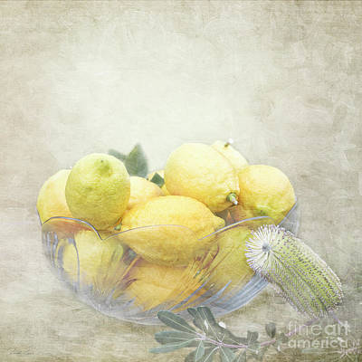Lemon Digital Art - Banksia And Lemons by Linda Lees
