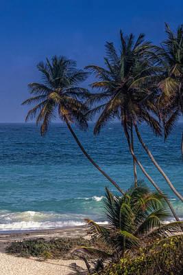 Holiday Photograph - Barbados Beach by Andrew Soundarajan