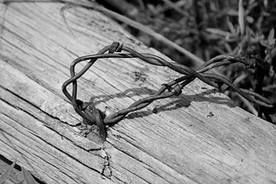 Black_white Photograph - Barbed by Trent Mallett