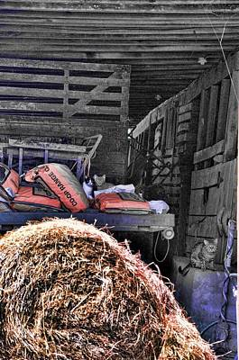 Barn Cats Print by Jan Amiss Photography