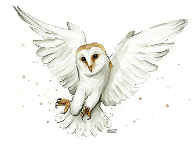 Barn Owl Flying Watercolor Print by Olga Shvartsur