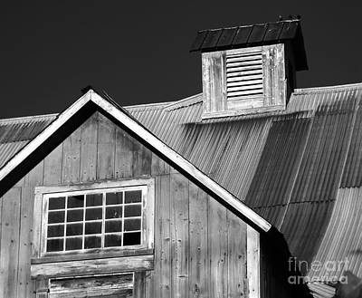 Refugee Artist Photograph - Barn Patterns by George Robinson