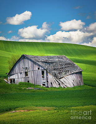 Rural Scenery Photograph - Barn Ruin by Inge Johnsson