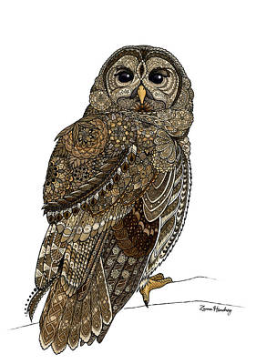 Sepia Ink Mixed Media - Barred Owl by ZH Field