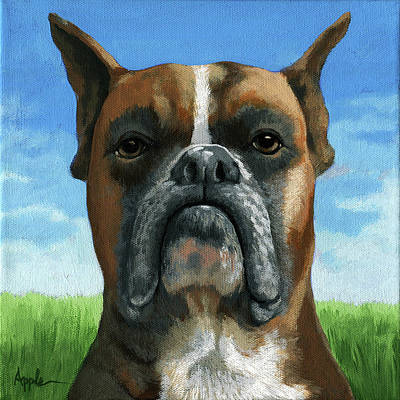 Painting - Barry Boxer by Linda Apple