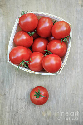 Basket Of Fresh Red Tomatoes Print by Edward Fielding