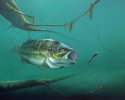 Bass Assassin  Original by David Womack