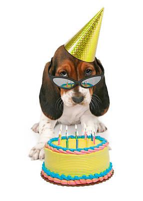 Basset Hound Puppy Wearing Sunglasses  Print by Susan  Schmitz