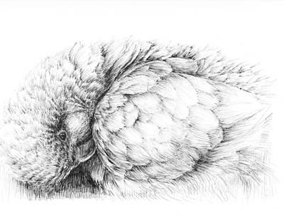 Bathing Bird Print by Crazy Cat Lady