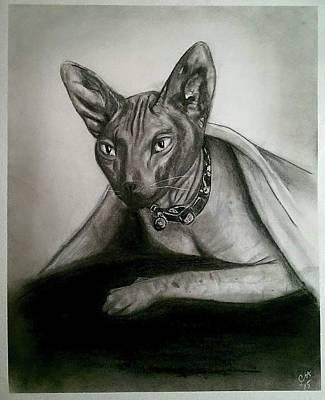 Austin Drawing - Battman by Carole Hutchison
