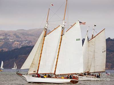 Lifestyle Photograph - Bay Schooners by Scott Cameron