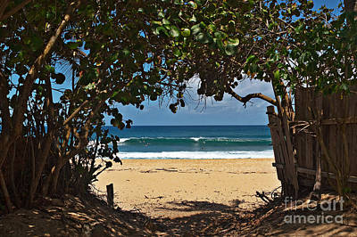 Surfing Photograph - Beach Access Pupukea by Paul Topp