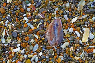Agate Beach Oregon Photograph - Beach Agate by Gary Wing