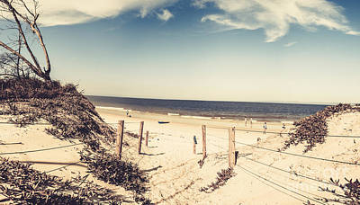 Water Filter Photograph - Beach Dune Path by Jorgo Photography - Wall Art Gallery