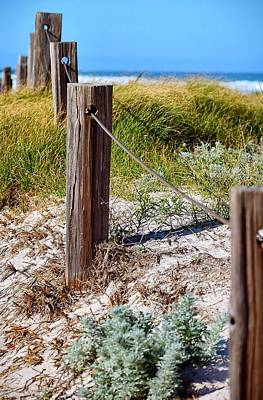 Yellow Photograph - Beach Fence by Sandy Taylor