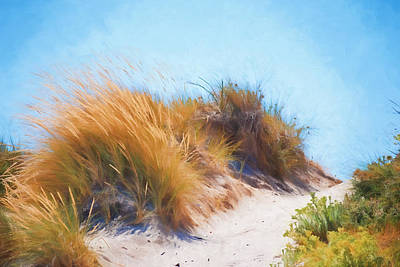 Australia Digital Art - Beach Grass And Sand Dunes by Michelle Wrighton