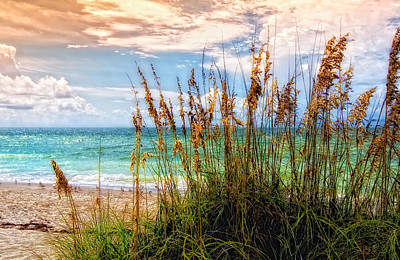 Seagrass Photograph - Beach Grass II by Gina Cormier
