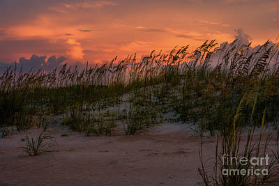 Sunrise Photograph - Beach Grass Silhouettes At Sunset by Zina Stromberg