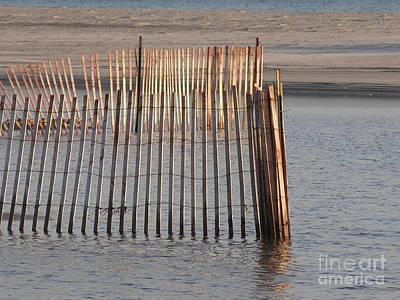 Beachy Original by Diane Greco-Lesser