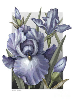 Stamen Digital Art - Bearded Iris by David Azzarello