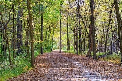 Creve Coeur Park Photograph - Beatiful Fall Day In Creve Coeur Park by Igor Aleynikov