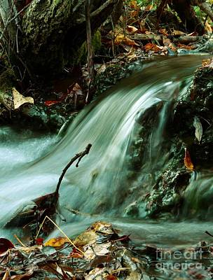 Beautiful Creek Print by Mario Brenes Simon
