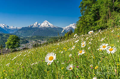 Flowers Photograph - Beautiful Flowers In Striking Mountain Landscape In Spring by JR Photography
