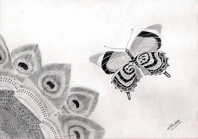 Kiwi Drawing - Beautiful Patterns In Nature by Selvam Venkatesan