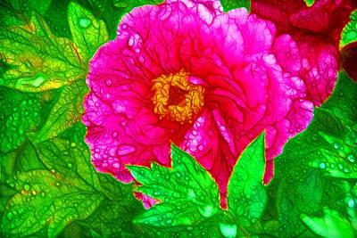 Flowergreetings Painting - Beautiful Pink Peony Flower 1 by Lanjee Chee