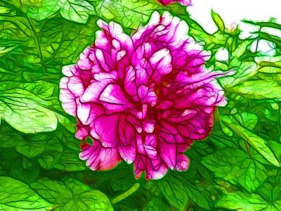 Flowergreetings Painting - Beautiful Pink Peony Flower 2 by Lanjee Chee