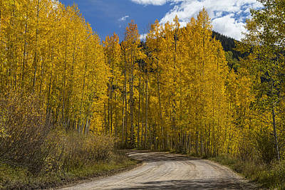 Beautiful Rocky Mountain Back Road  Print by James BO  Insogna