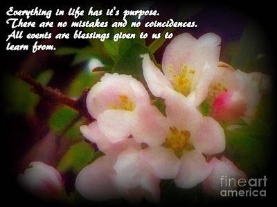 Beautiful Springtime Blooms With Life Quote Print by Kay Novy