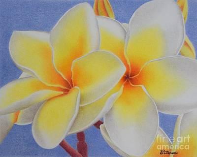 Beautiful White Plumeria Original by Sharon Patterson