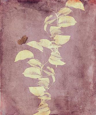 Simplicity Mixed Media - Beauty In Simplicity Minimalism by Georgiana Romanovna