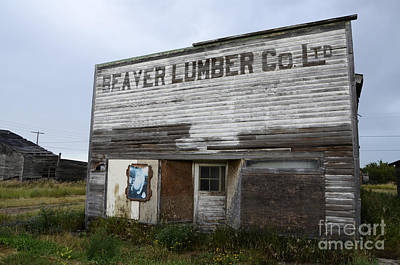Beaver Photograph - Beaver Lumber Company Ltd Robsart by Bob Christopher